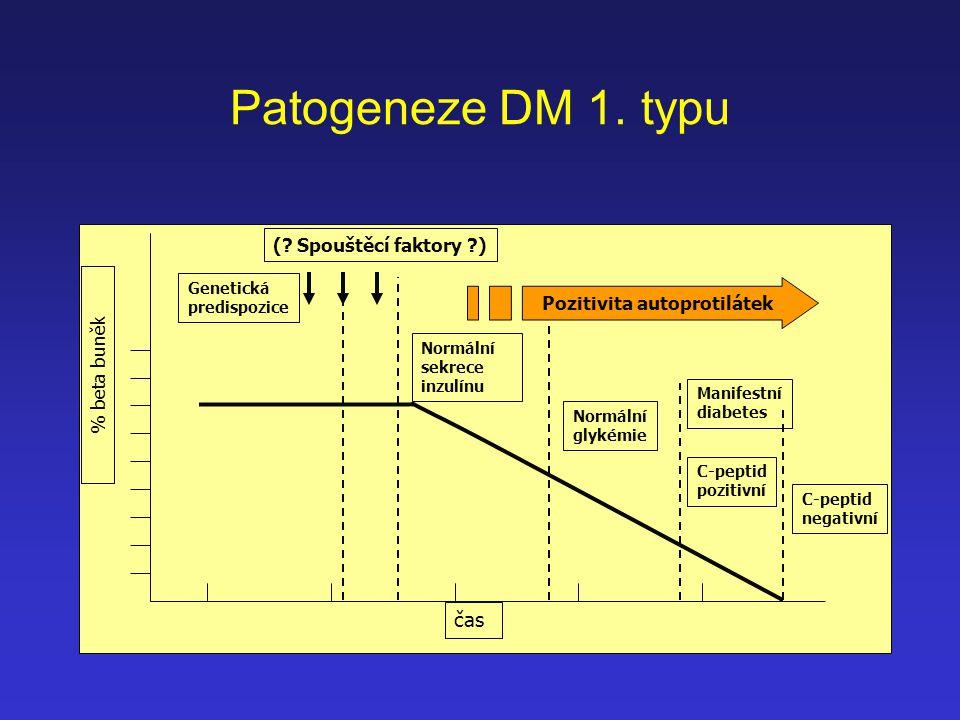 Patogeneze DM 1. typu čas Genetická predispozice % beta buněk (? Spouštěcí faktory ?) Normální sekrece inzulínu Normální glykémie Manifestní diabetes