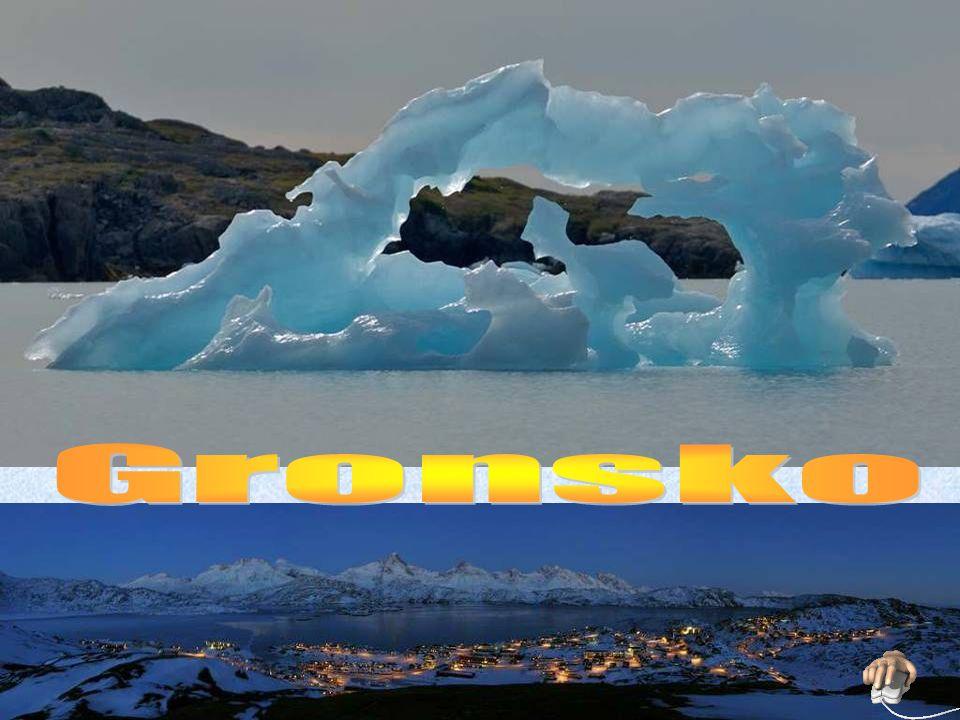 Nejznámějším zástupcem grónské fauny je lední medvěd.