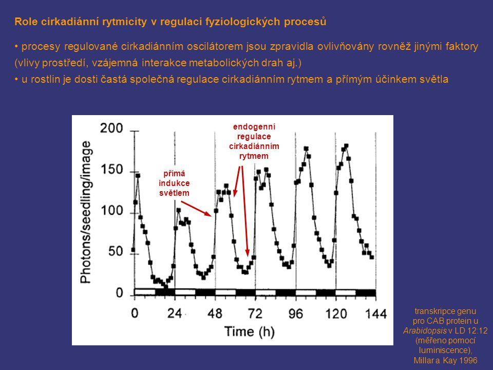 Role cirkadiánní rytmicity v regulaci fyziologických procesů procesy regulované cirkadiánním oscilátorem jsou zpravidla ovlivňovány rovněž jinými fakt