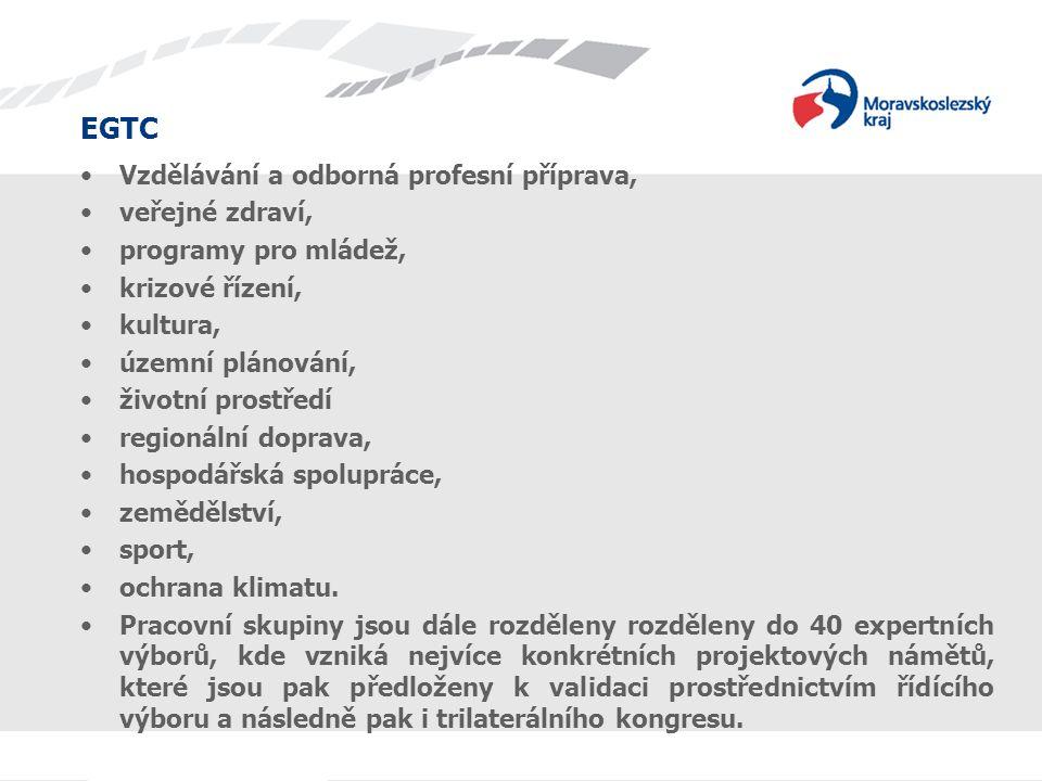 Vzdělávání a odborná profesní příprava, veřejné zdraví, programy pro mládež, krizové řízení, kultura, územní plánování, životní prostředí regionální d