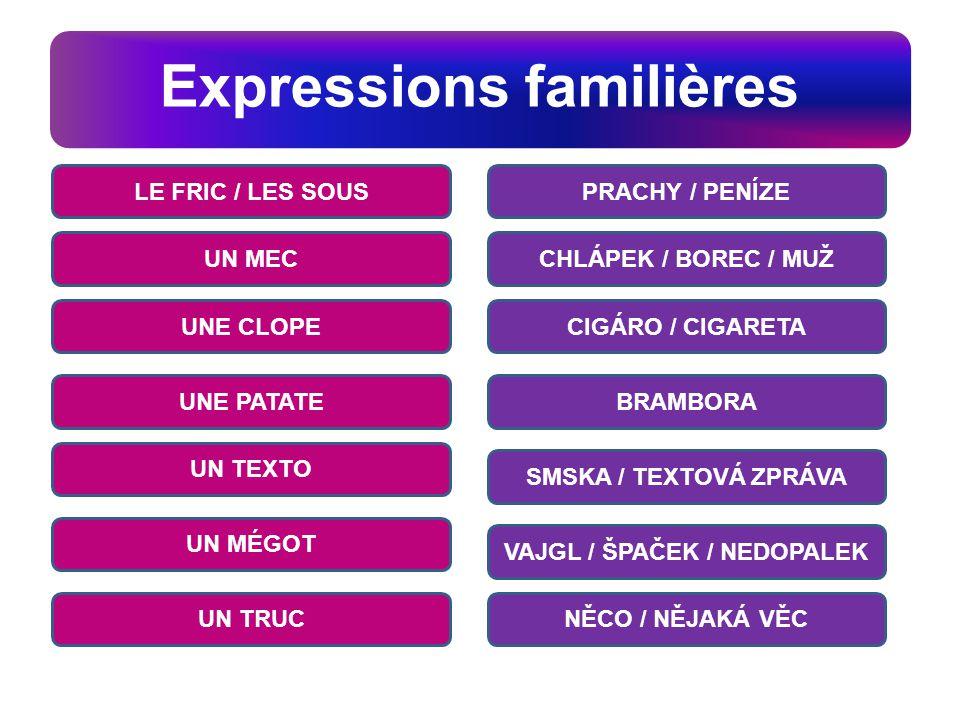 Expressions familières v PRACHY / PENÍZE CHLÁPEK / BOREC / MUŽ CIGÁRO / CIGARETA BRAMBORA SMSKA / TEXTOVÁ ZPRÁVA VAJGL / ŠPAČEK / NEDOPALEK NĚCO / NĚJ