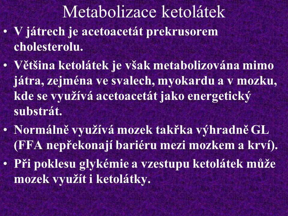 Metabolizace ketolátek V játrech je acetoacetát prekrusorem cholesterolu. Většina ketolátek je však metabolizována mimo játra, zejména ve svalech, myo