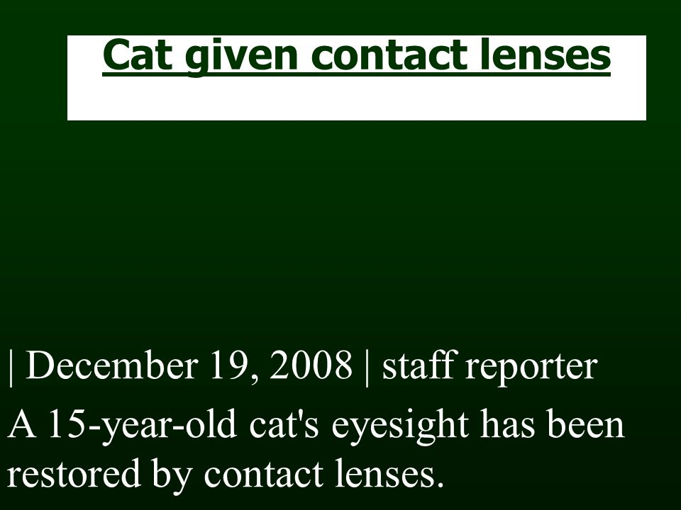 Cat given contact lenses | December 19, 2008 | staff reporter A 15-year-old cat s eyesight has been restored by contact lenses.