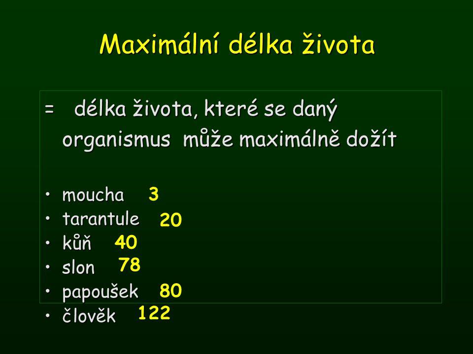 Maximální délka života = délka života, které se daný organismus může maximálně dožít mouchamoucha tarantuletarantule kůňkůň slonslon papoušekpapoušek