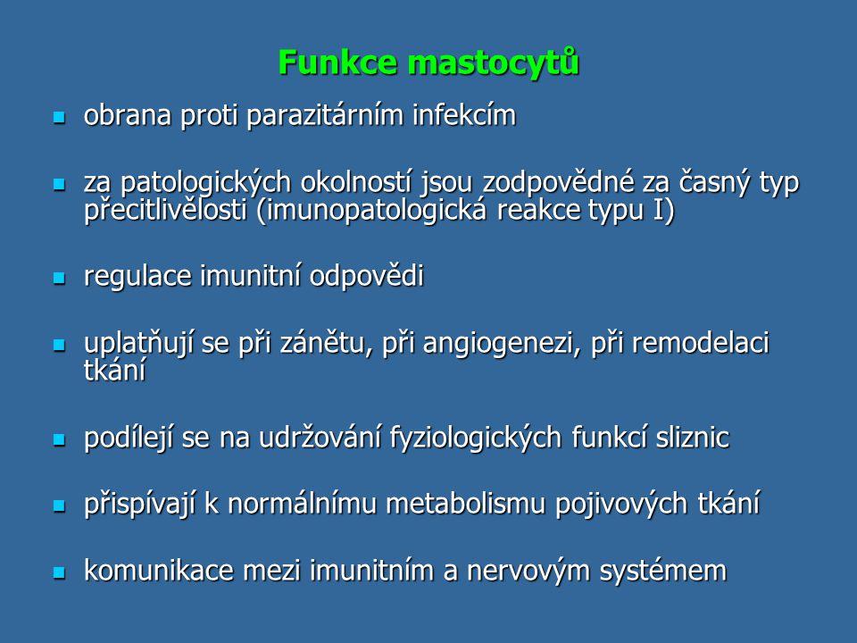 Funkce mastocytů obrana proti parazitárním infekcím obrana proti parazitárním infekcím za patologických okolností jsou zodpovědné za časný typ přecitl