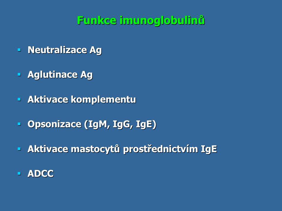 Funkce imunoglobulinů  Neutralizace Ag  Aglutinace Ag  Aktivace komplementu  Opsonizace (IgM, IgG, IgE)  Aktivace mastocytů prostřednictvím IgE 