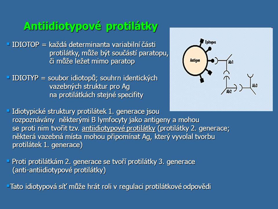 Antiidiotypové protilátky  IDIOTOP = každá determinanta variabilní části protilátky, může být součástí paratopu, či může ležet mimo paratop protilátk