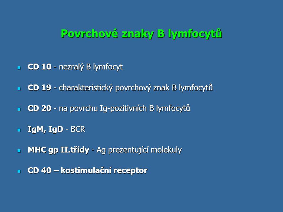 Povrchové znaky B lymfocytů CD 10 - nezralý B lymfocyt CD 10 - nezralý B lymfocyt CD 19 - charakteristický povrchový znak B lymfocytů CD 19 - charakte