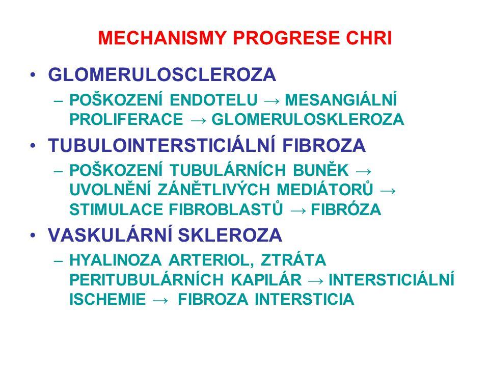MECHANISMY PROGRESE CHRI GLOMERULOSCLEROZA –POŠKOZENÍ ENDOTELU → MESANGIÁLNÍ PROLIFERACE → GLOMERULOSKLEROZA TUBULOINTERSTICIÁLNÍ FIBROZA –POŠKOZENÍ T