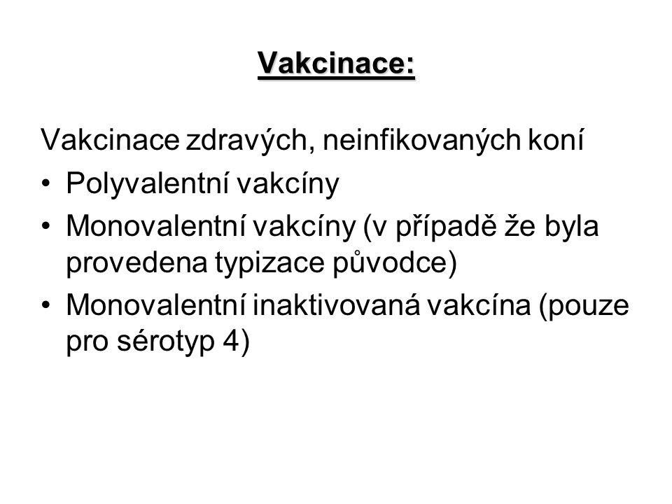 Vakcinace: Vakcinace zdravých, neinfikovaných koní Polyvalentní vakcíny Monovalentní vakcíny (v případě že byla provedena typizace původce) Monovalentní inaktivovaná vakcína (pouze pro sérotyp 4)