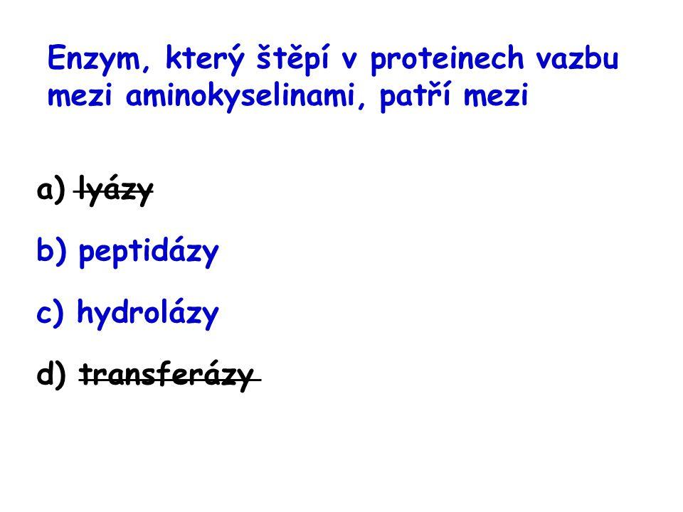 Enzym, který štěpí v proteinech vazbu mezi aminokyselinami, patří mezi a) lyázy b) peptidázy c) hydrolázy d) transferázy