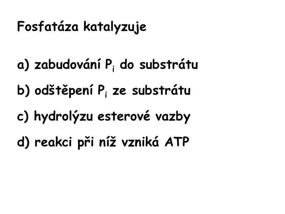 Fosfatáza katalyzuje a) zabudování P i do substrátu b) odštěpení P i ze substrátu c) hydrolýzu esterové vazby d) reakci při níž vzniká ATP
