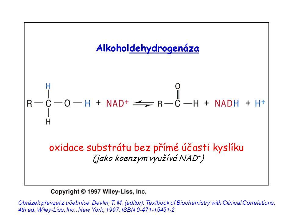 inhibitor se váže na jiné místo enzymu než substrát inhibici nelze potlačit zvýšením koncentrace substrátu (nemění se K m ) V max klesá (protože došlo ke snížení aktuální koncentrace aktivního enzymu) vratná pouze pokud se inhibitor neváže na enzym kovalentně Obrázek převzat z http://www.steve.gb.com/science/enzymes.html (prosinec 2006)http://www.steve.gb.com/science/enzymes.html Nekompetitivní inhibice