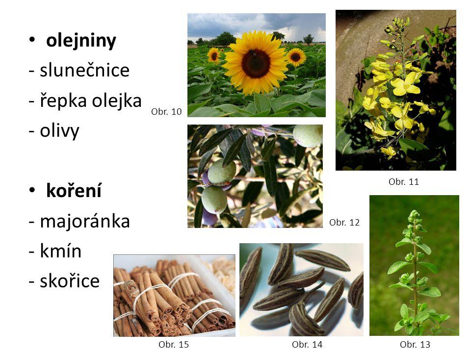 olejniny - slunečnice - řepka olejka - olivy koření - majoránka - kmín - skořice Obr. 10 Obr. 11 Obr. 12 Obr. 13 Obr. 14 Obr. 15