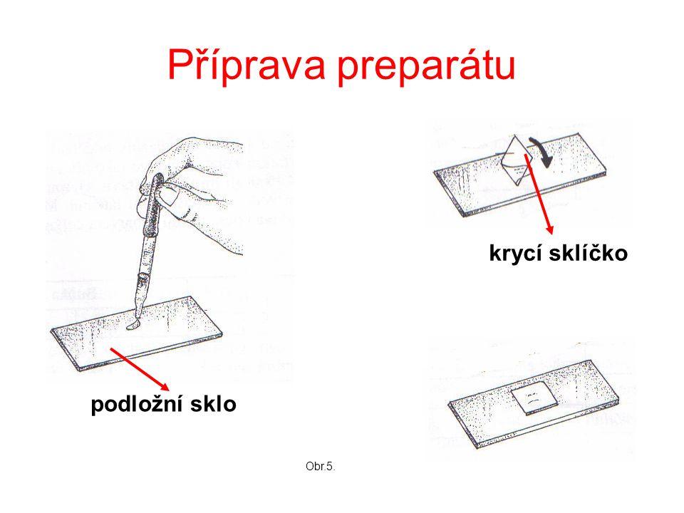 Příprava preparátu podložní sklo krycí sklíčko Obr.5.