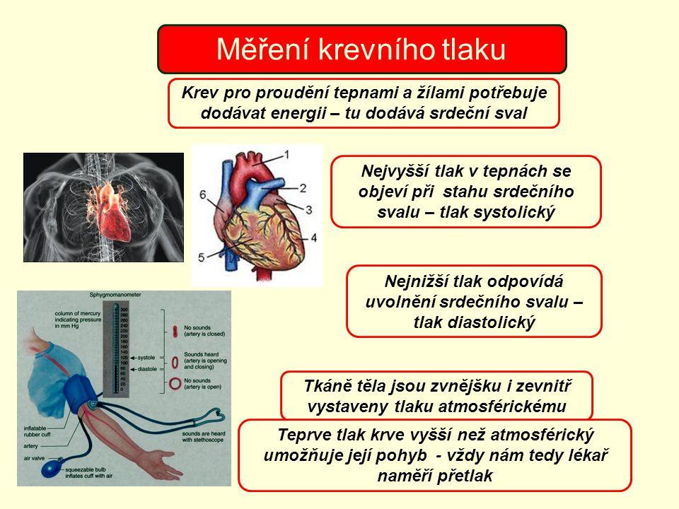 Měření krevního tlaku Krev pro proudění tepnami a žílami potřebuje dodávat energii – tu dodává srdeční sval Nejvyšší tlak v tepnách se objeví při stah
