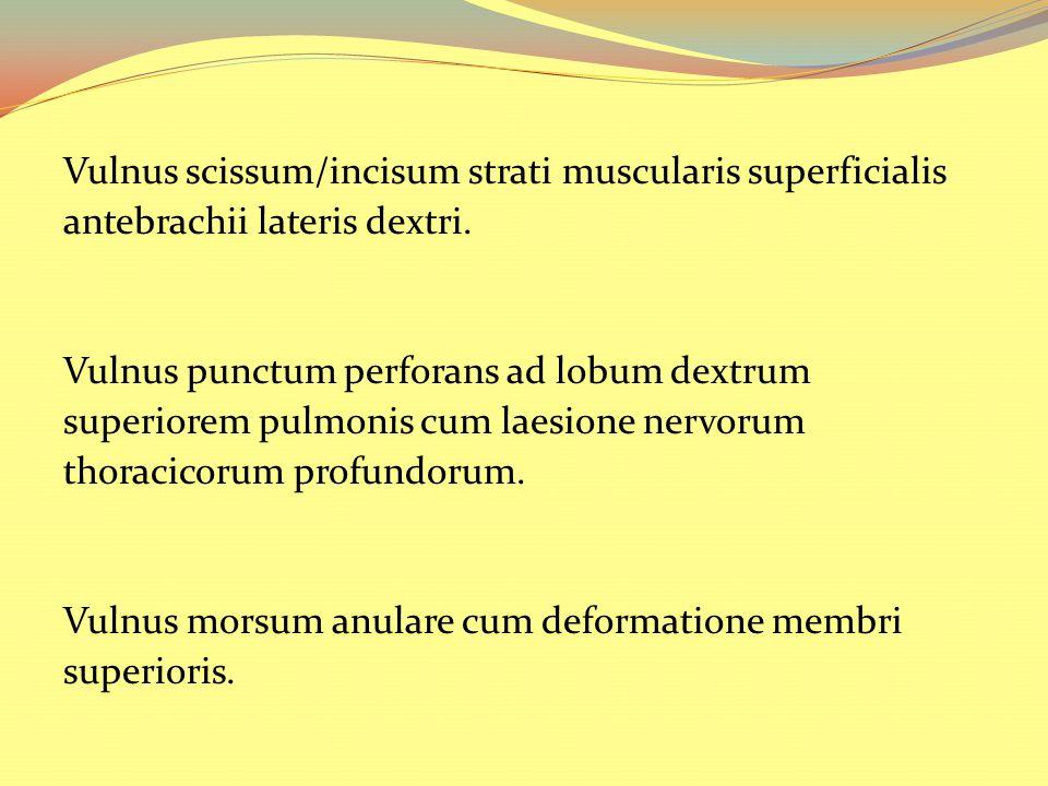 Vulnus scissum/incisum strati muscularis superficialis antebrachii lateris dextri. Vulnus punctum perforans ad lobum dextrum superiorem pulmonis cum l