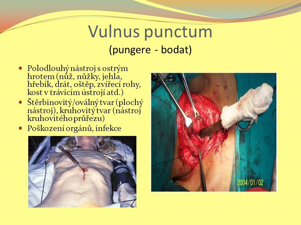 Vulnus punctum (pungere - bodat) Polodlouhý nástroj s ostrým hrotem (nůž, nůžky, jehla, hřebík, drát, oštěp, zvířecí rohy, kost v trávicím ústrojí atd.) Štěrbinovitý/oválný tvar (plochý nástroj), kruhovitý tvar (nástroj kruhovitého průřezu) Poškození orgánů, infekce