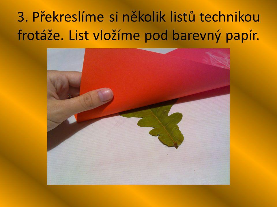 3. Překreslíme si několik listů technikou frotáže. List vložíme pod barevný papír.