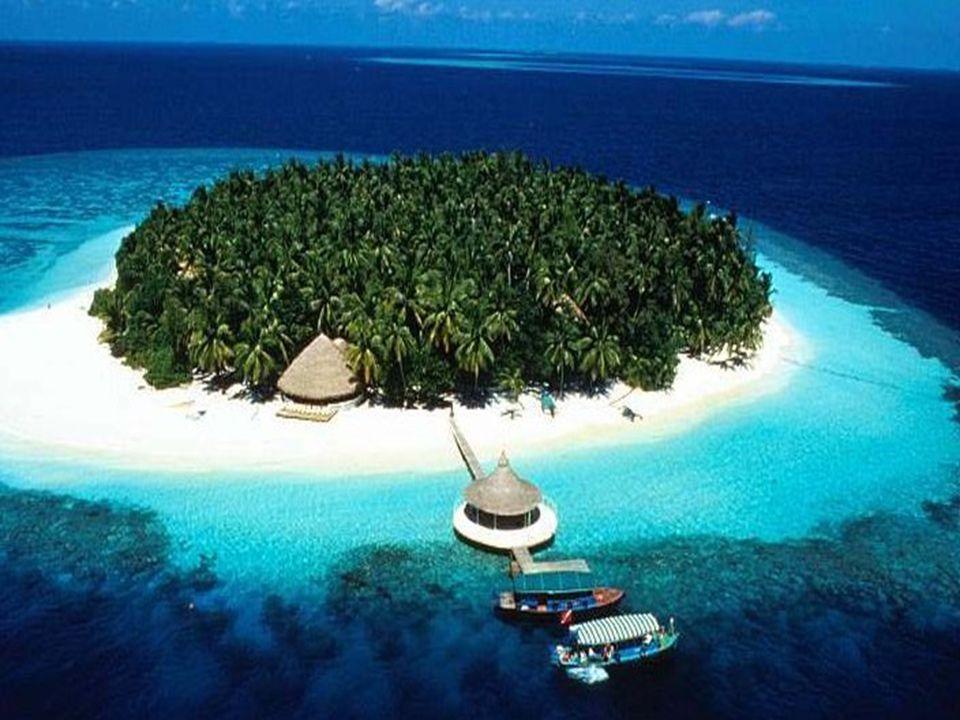 První podvodní bar na korálovém útesu láká na panoramatická okna První bar pod mořskou hladinou na světě se otevřel začátkem října na Maledivách - kor
