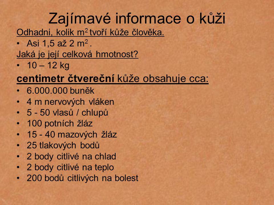 Zajímavé informace o kůži Odhadni, kolik m 2 tvoří kůže člověka. Asi 1,5 až 2 m 2. Jaká je její celková hmotnost? 10 – 12 kg centimetr čtvereční kůže
