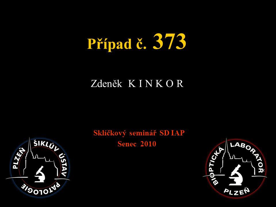 Případ č. 373 Zdeněk K I N K O R Sklíčkový seminář SD IAP Senec 2010