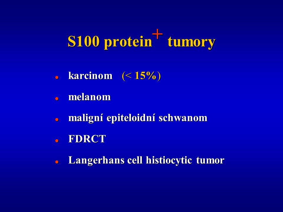 S100 protein + tumory  karcinom (< 15%)  melanom  maligní epiteloidní schwanom  FDRCT  Langerhans cell histiocytic tumor