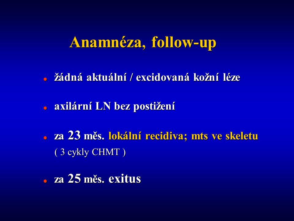 Anamnéza, follow-up  žádná aktuální / excidovaná kožní léze  axilární LN bez postižení  za 23 měs.