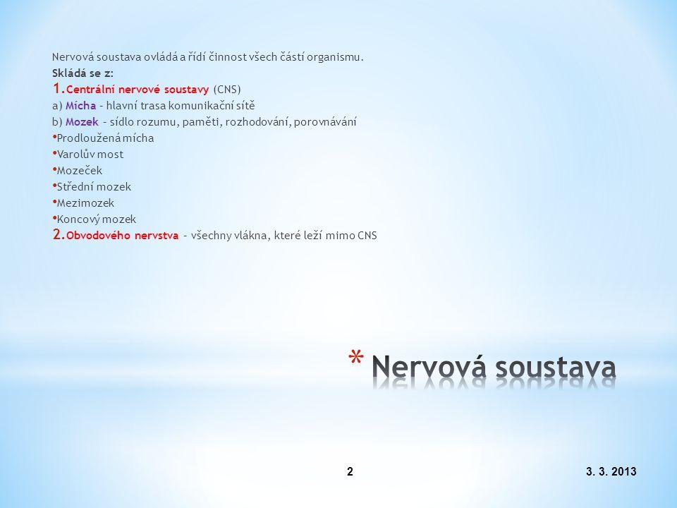 3. 3. 20132 Nervová soustava ovládá a řídí činnost všech částí organismu. Skládá se z: 1. Centrální nervové soustavy (CNS) a) Mícha – hlavní trasa kom