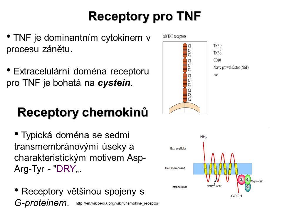 Receptory pro TNF Typická doména se sedmi transmembránovými úseky a charakteristickým motivem Asp- Arg-Tyr -