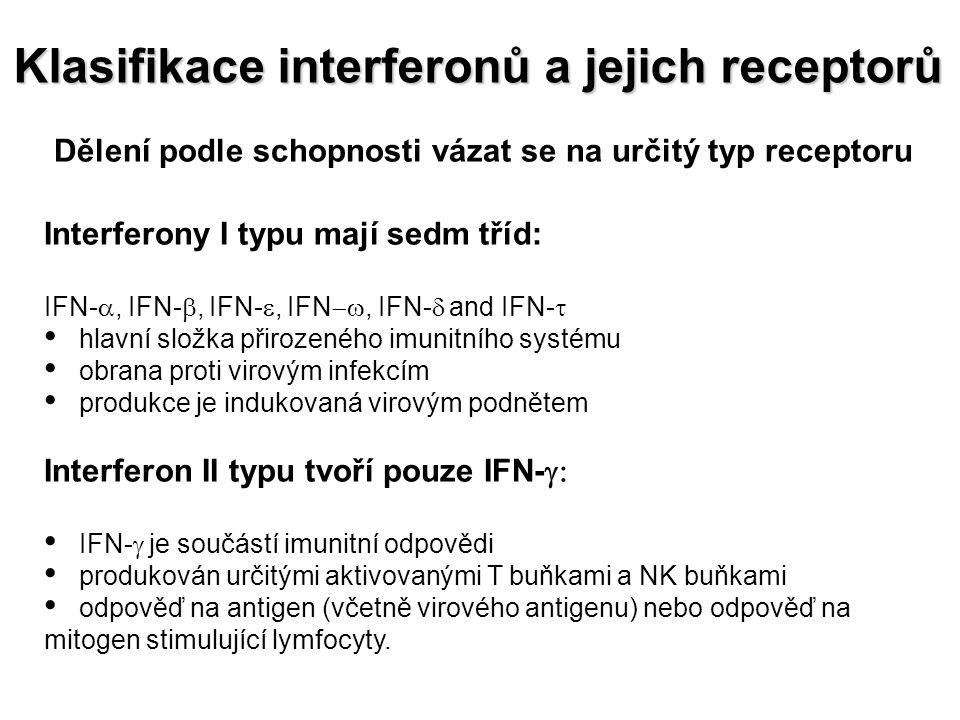Dělení podle schopnosti vázat se na určitý typ receptoru Interferony I typu mají sedm tříd: IFN- , IFN- , IFN- , IFN , IFN-  and IFN-  hlavní