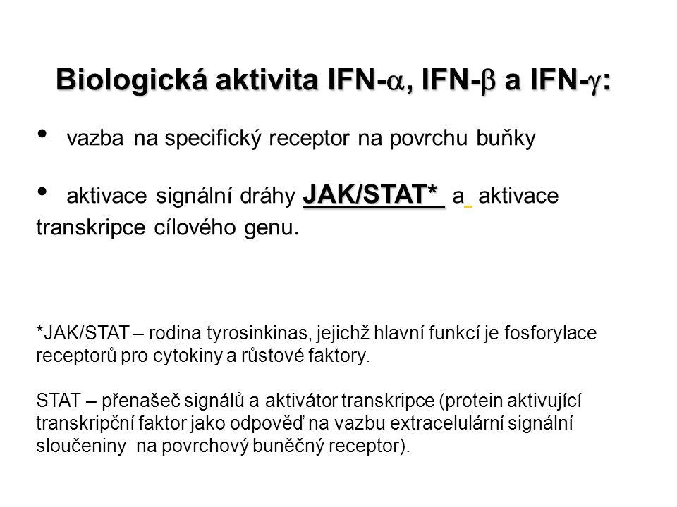 Biologická aktivita IFN- , IFN-  a IFN-  : vazba na specifický receptor na povrchu buňky JAK/STAT* aktivace signální dráhy JAK/STAT* a aktivace tra