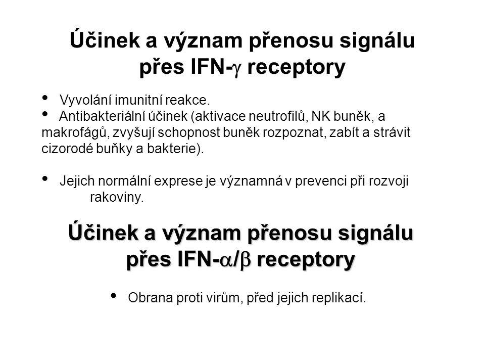 Účinek a význam přenosu signálu přes IFN-  receptory Vyvolání imunitní reakce. Antibakteriální účinek (aktivace neutrofilů, NK buněk, a makrofágů, zv