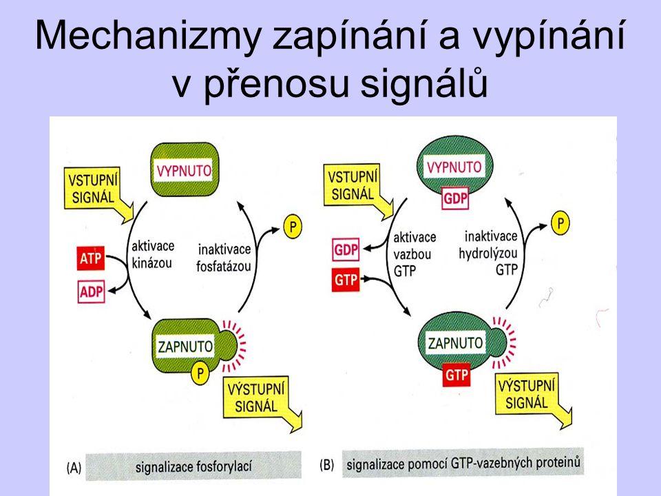 Mechanizmy zapínání a vypínání v přenosu signálů