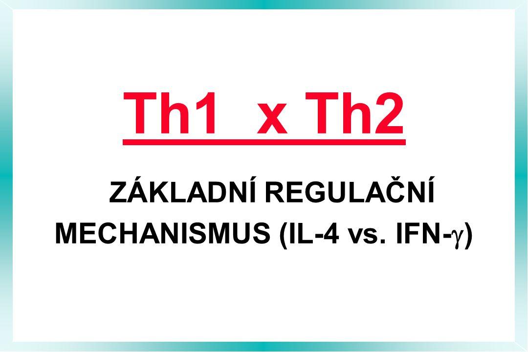 Th1 x Th2 ZÁKLADNÍ REGULAČNÍ MECHANISMUS (IL-4 vs. IFN-  )