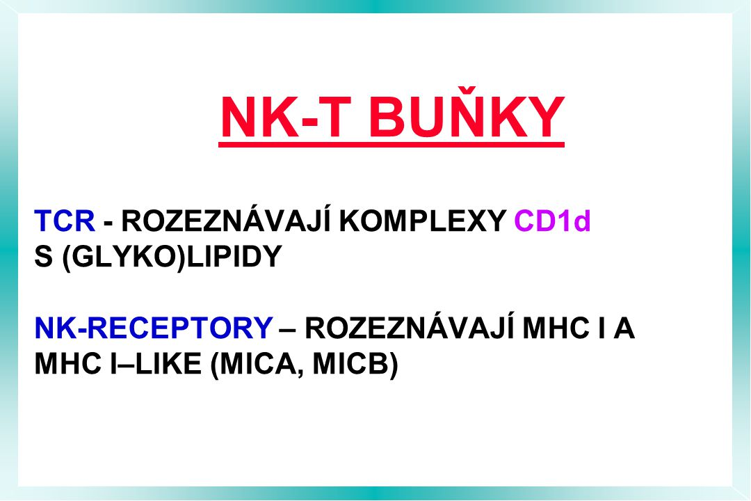 NK-T BUŇKY TCR - ROZEZNÁVAJÍ KOMPLEXY CD1d S (GLYKO)LIPIDY NK-RECEPTORY – ROZEZNÁVAJÍ MHC I A MHC I–LIKE (MICA, MICB)