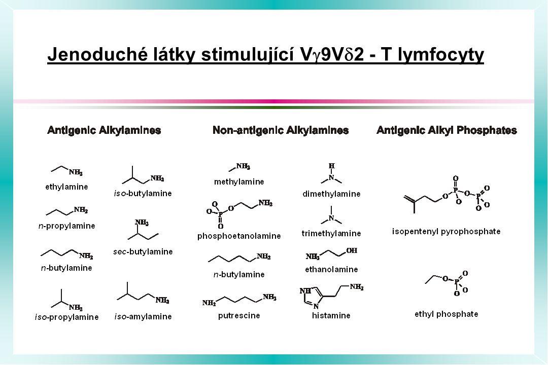 Jenoduché látky stimulující V  9V  2 - T lymfocyty