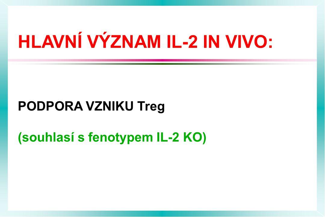 HLAVNÍ VÝZNAM IL-2 IN VIVO: PODPORA VZNIKU Treg (souhlasí s fenotypem IL-2 KO)