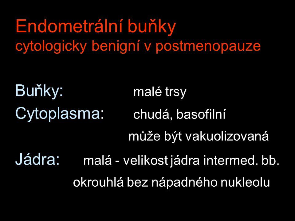 Endometrální buňky cytologicky benigní v postmenopauze Buňky: malé trsy Cytoplasma: chudá, basofilní může být vakuolizovaná Jádra: malá - velikost jád