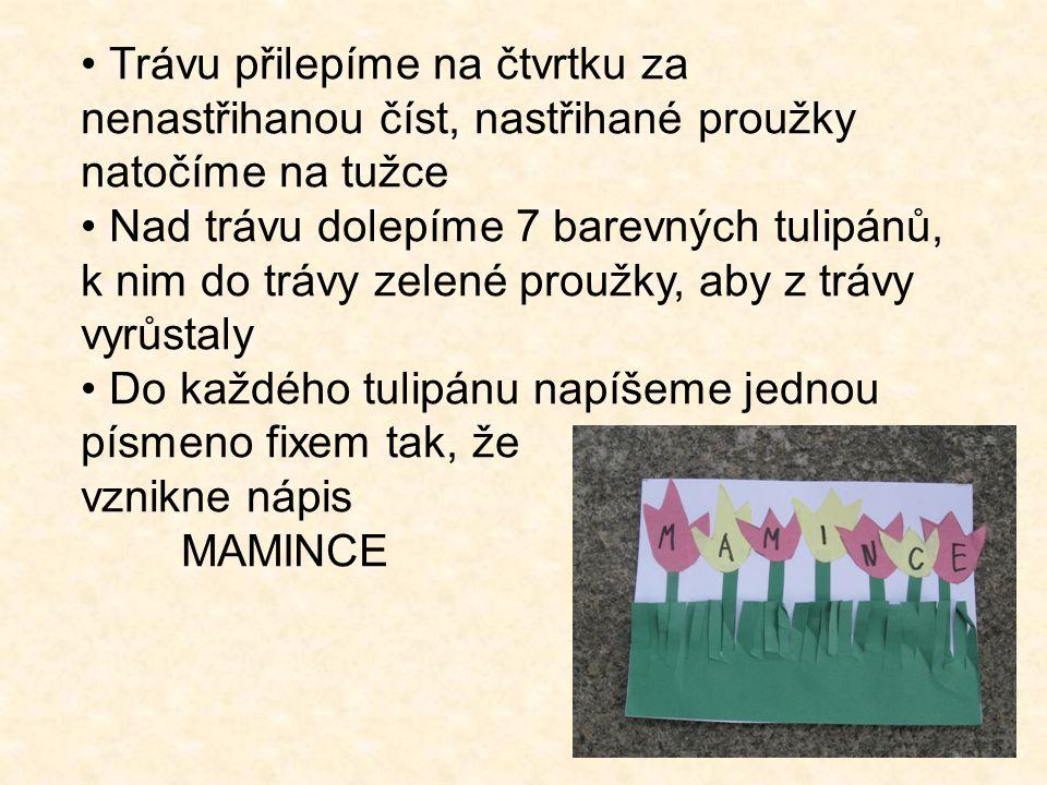 Trávu přilepíme na čtvrtku za nenastřihanou číst, nastřihané proužky natočíme na tužce Nad trávu dolepíme 7 barevných tulipánů, k nim do trávy zelené proužky, aby z trávy vyrůstaly Do každého tulipánu napíšeme jednou písmeno fixem tak, že vznikne nápis MAMINCE