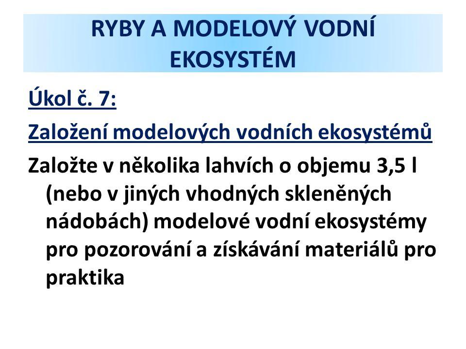 RYBY A MODELOVÝ VODNÍ EKOSYSTÉM Úkol č. 7: Založení modelových vodních ekosystémů Založte v několika lahvích o objemu 3,5 l (nebo v jiných vhodných sk