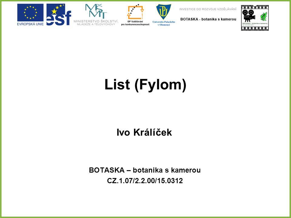 List (Fylom) BOTASKA – botanika s kamerou CZ.1.07/2.2.00/15.0312 Ivo Králíček