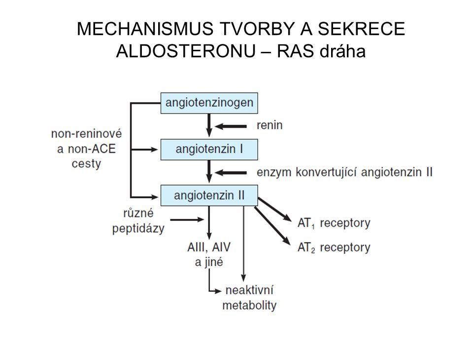 MECHANISMUS TVORBY A SEKRECE ALDOSTERONU – RAS dráha