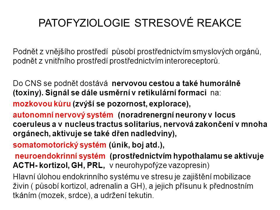 PATOFYZIOLOGIE STRESOVÉ REAKCE Podnět z vnějšího prostředí působí prostřednictvím smyslových orgánů, podnět z vnitřního prostředí prostřednictvím inte