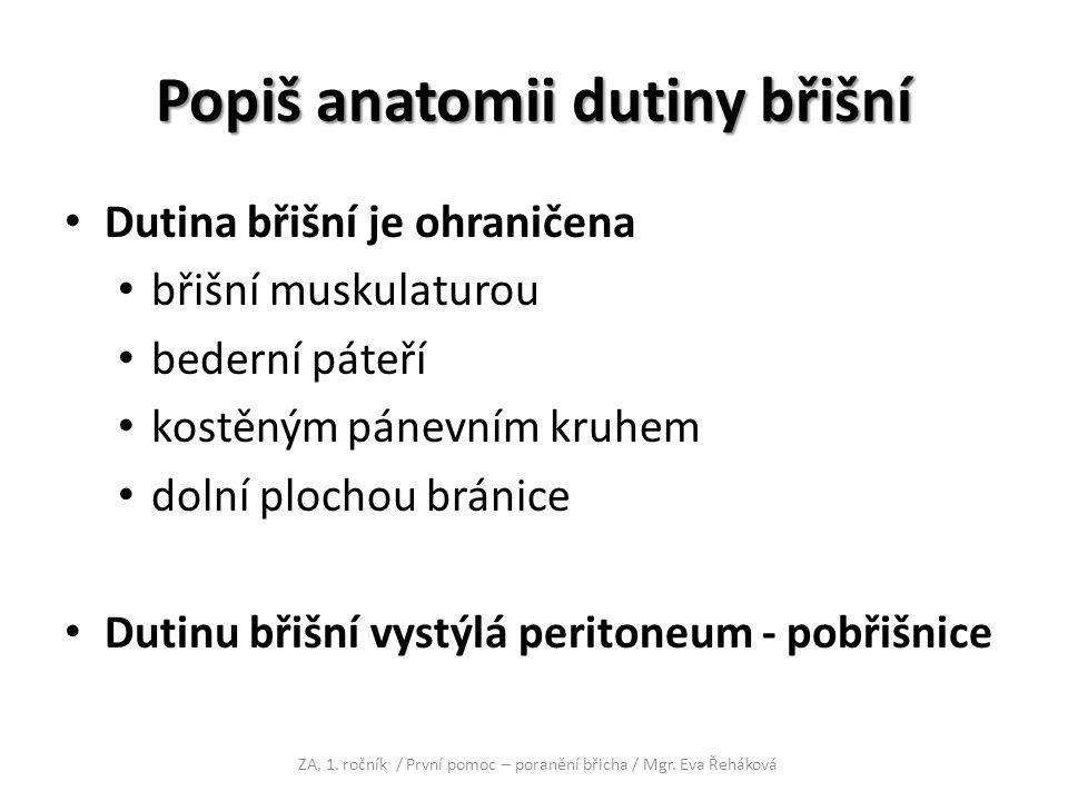 Popiš anatomii dutiny břišní Dutina břišní je ohraničena břišní muskulaturou bederní páteří kostěným pánevním kruhem dolní plochou bránice Dutinu břiš