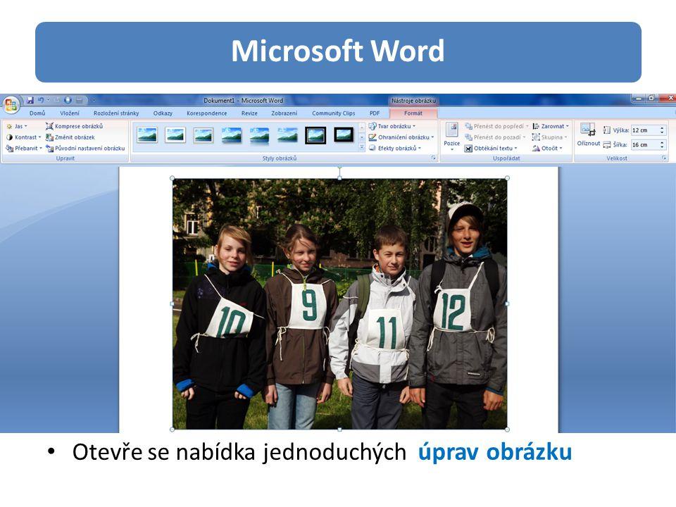 Microsoft Word Úpravy parametrů obrázku Styly a efekty obrázku Ohraničení, tvar, rámy Výběr