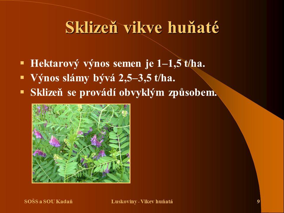 SOŠS a SOU KadaňLuskoviny - Vikev huňatá9 Sklizeň vikve huňaté  Hektarový výnos semen je 1–1,5 t/ha.  Výnos slámy bývá 2,5–3,5 t/ha.  Sklizeň se pr