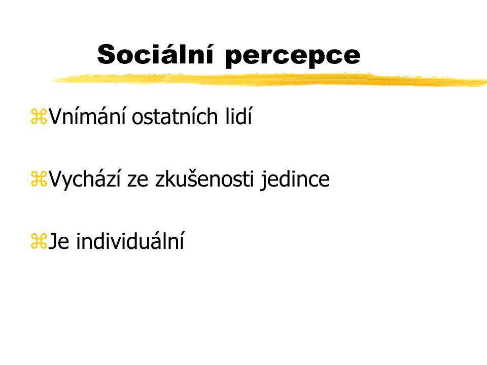 Sociální percepce zVnímání ostatních lidí zVychází ze zkušenosti jedince zJe individuální