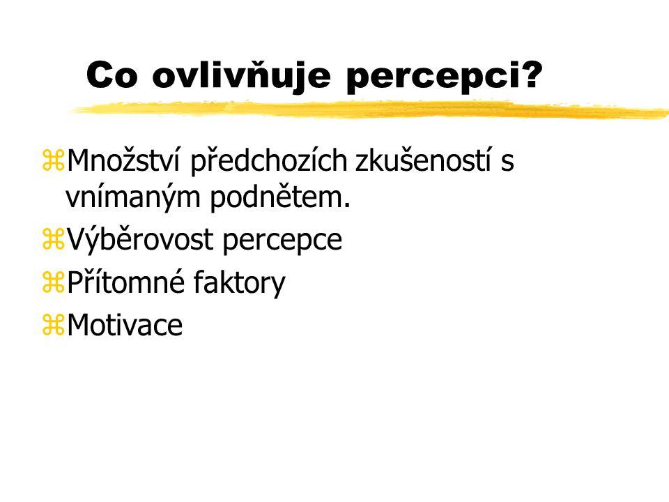 Co ovlivňuje percepci? zMnožství předchozích zkušeností s vnímaným podnětem. zVýběrovost percepce zPřítomné faktory zMotivace