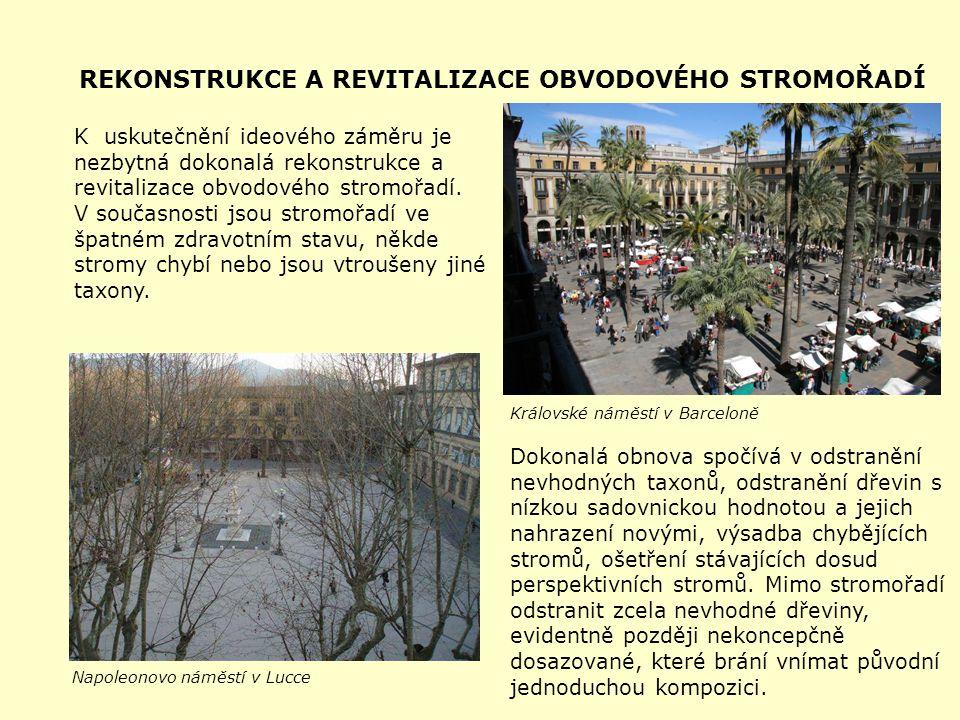 REKONSTRUKCE A REVITALIZACE OBVODOVÉHO STROMOŘADÍ K uskutečnění ideového záměru je nezbytná dokonalá rekonstrukce a revitalizace obvodového stromořadí.